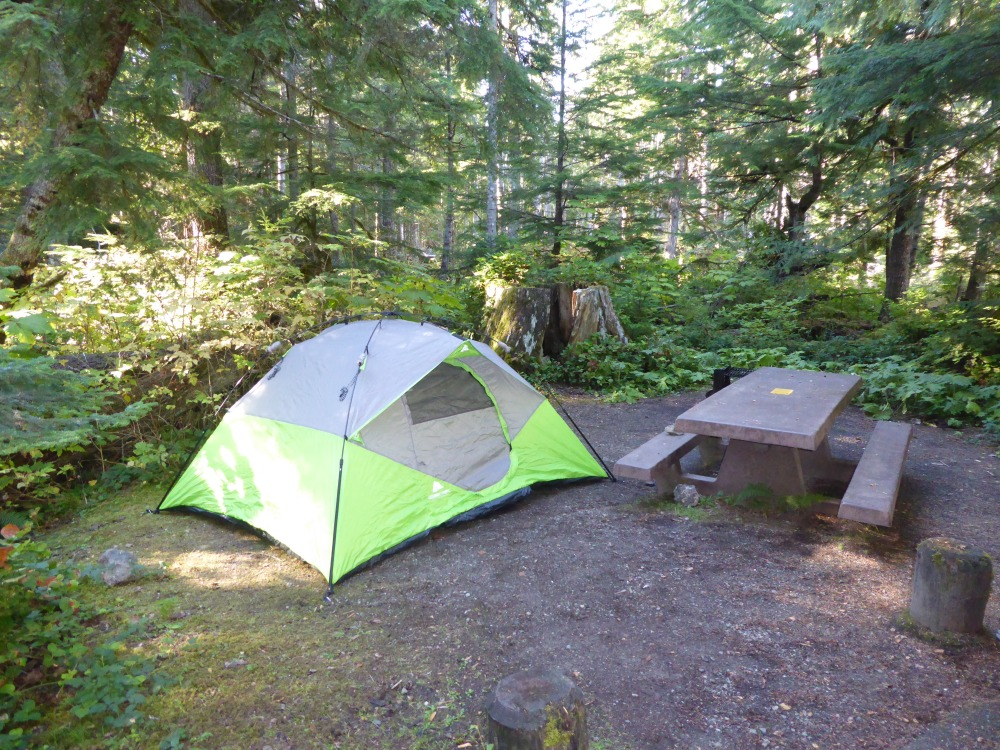 Camping at Heart O' The Hills Campsite in Olympic National Park